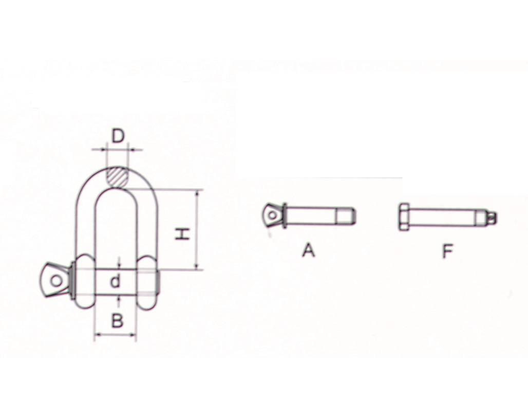 Stainless Steel U.S.Type Dee Shackle Thumb 1